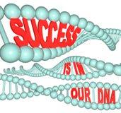 Erfolg ist in unserer DNA Stockfotos