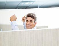 Erfolgreicher Manager In Cubicle Lizenzfreie Stockfotos