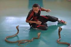 Erformer sztuka z kobrą podczas przedstawienia w zoo Zdjęcie Stock