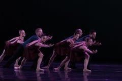 Erforschen Sie das Wahrheit-klassische Ballett ` Austen-Sammlung ` Stockbild