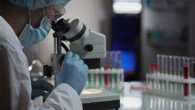 Erforschen Sie den Analytiker, der im Labor arbeitet und Impfstoff für Poliomyelitis entwickeln stock footage