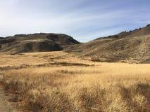 Erforschung der Landschaft während einer kamloops Wildniswanderung Stockfotos
