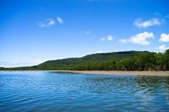 Erforschung von einem Mangrovefluß lizenzfreies stockbild