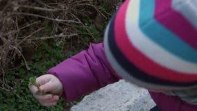 Erforschungsnatur des kleinen Mädchens im Vorfrühling, erste Sprösslinge betrachtend stock video