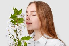 Erfreute attraktive Frau riecht Kirschblüte, genießt angenehmen Geruch, hat langes gerades Haar, hält Augen geschlossen, vorbei l lizenzfreies stockbild