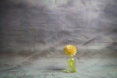 Erfrischungsmittel mit Papierblumen in ihm lizenzfreie stockfotografie