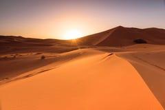 Erg ανατολή αμμόλοφων Chebbi, Μαρόκο Στοκ εικόνα με δικαίωμα ελεύθερης χρήσης