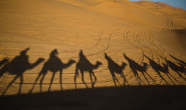 Erg Chebbi caravan. Erg Chebbi is one of Morocco's two Saharan ergs – large dunes formed by wind-blown sand –. The other is Erg Chigaga near M'hamid. Its Stock Image