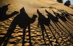 Erg Chebbi caravan shadow. Erg Chebbi is one of Morocco's two Saharan ergs – large dunes formed by wind-blown sand –. The other is Erg Chigaga near M'hamid Stock Photos