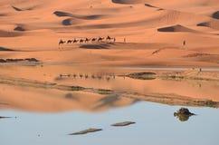 Erg Chebbi desert. Camel tour on a lake side in Erg Chebbi desert in Morocco Stock Photo