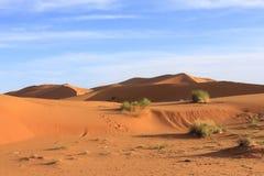Erg Chebbi Morocco. Dsert in Erg Chebbi Morocco Stock Photos