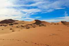 Erg Chebbi in Morocco Royalty Free Stock Image