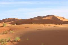 Erg Chebbi Morocco. Erg Chebbi near merzouga Morocco Royalty Free Stock Photography