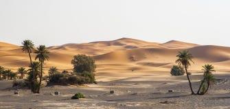 ERG Chebbi nel Marocco Fotografie Stock Libere da Diritti