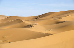 Erg Chebbi. Is one of Morocco's two Saharan ergs – large dunes formed by wind-blown sand Stock Images