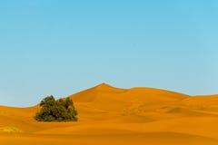Erg chebbi. Sahara dunes in erg chebbi, morocco Royalty Free Stock Images