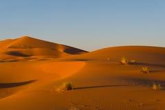 Erg chebbi. Sahara dunes in erg chebbi, morocco Stock Photography
