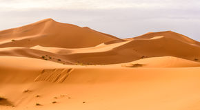 Erg Chebbi sand dunes in the Moroccan desert. Erg Chebbi sand dunes of the Moroccan desert Royalty Free Stock Images