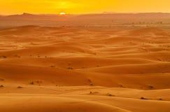 Erg Chebbi Sand dunes near Merzouga on sunset. Morocco. View of Erg Chebbi Sand dunes on sunset. Sahara Desert near Merzouga, Morocco Stock Image