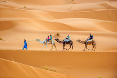 ERG CHEBBY, MOROCCO - April, 12, 2013: Tourists riding camels Stock Images
