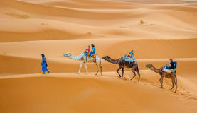 ERG CHEBBY, MOROCCO - April, 12, 2013: Tourists riding camels in Royalty Free Stock Photo