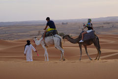 Walk in the ERG desert in Morocco. Erg Morocco Some tourists riding dromedaries for a walk in dawn Desert Erg Chebbi in Arabic: عرق الشبي is one of two Royalty Free Stock Images