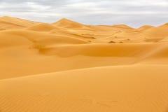Erga Chebbi pustynia, Maroko Fotografia Stock