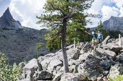 ERGAKI ROSJA, SIERPIEŃ, - 05 2017: Kilka atlety biegają przez gór, uczestnicy wlec SKAYRANFEST Fotografia Royalty Free