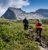 ERGAKI RYSSLAND - AUGUSTI 05 2017: Flera idrottsman nen kör till och med bergen, deltagare som skuggar SKAYRANFESTEN Fotografering för Bildbyråer