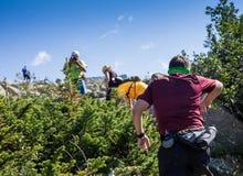 ERGAKI RYSSLAND - AUGUSTI 05 2017: Flera idrottsman nen kör till och med bergen, deltagare som skuggar SKAYRANFESTEN Arkivfoton