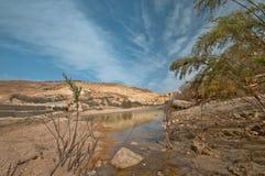 Ergens in de Woestijn Royalty-vrije Stock Foto