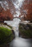 Ergens langs de watervallen Royalty-vrije Stock Afbeelding