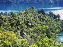 Ergens in Nieuw Zeeland royalty-vrije stock afbeelding