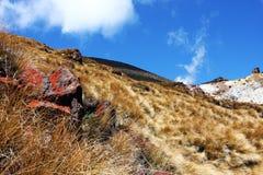 Ergens in Nieuw Zeeland Stock Foto's