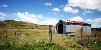 Ergens in Nieuw Zeeland Royalty-vrije Stock Fotografie