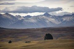 Ergens in Nieuw Zeeland Royalty-vrije Stock Foto's