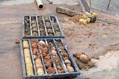 Erhålla jordprövkopior i plast- kärnaask royaltyfri foto