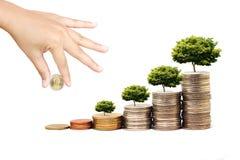 Erhöhen Sie Ihre Sparungen lizenzfreies stockbild