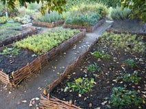 Erhöhte Weidengemüsebetten Gartenarbeitausrüstung für Hauptgärtner Lizenzfreie Stockbilder