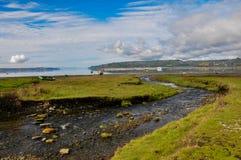 Erhabener Nebenfluss, Chiloé-Insel, Chile stockfotos