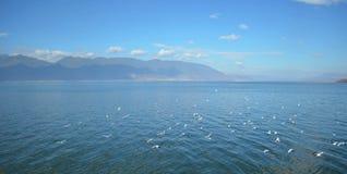 Erhai lake.china 免版税库存图片
