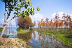 Erhai jezioro Zdjęcia Royalty Free