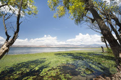 Erhai lake in Dali, Yunnan , China. Royalty Free Stock Photography