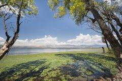 Erhai lake in Dali, Yunnan , China. Royalty Free Stock Photo