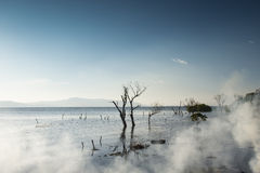 Erhai Lake in the morning Stock Images