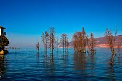 Erhai lake Royalty Free Stock Images