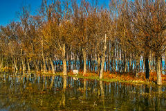 Erhai lake Royalty Free Stock Images