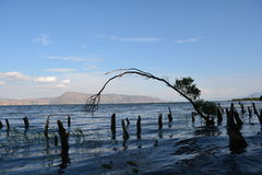 Erhai lake Royalty Free Stock Photos