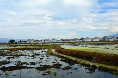 Erhai lake. In Yunnan, China. in Yunnan, China.This is the Xizhou town beside the stock photo