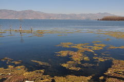 Erhai sjö i Yunnan, Kina fiskebåtfolk Arkivfoto
